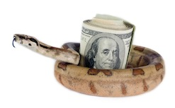 Snake with money